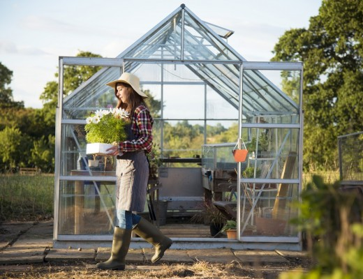 9 Benefits Of Investing In Greenhouses