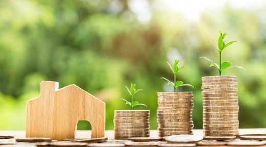 Why Pest Inspections Can Save You Money On A New Home